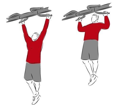 Klimmzug-Training-Ausführung Regeln Tipps